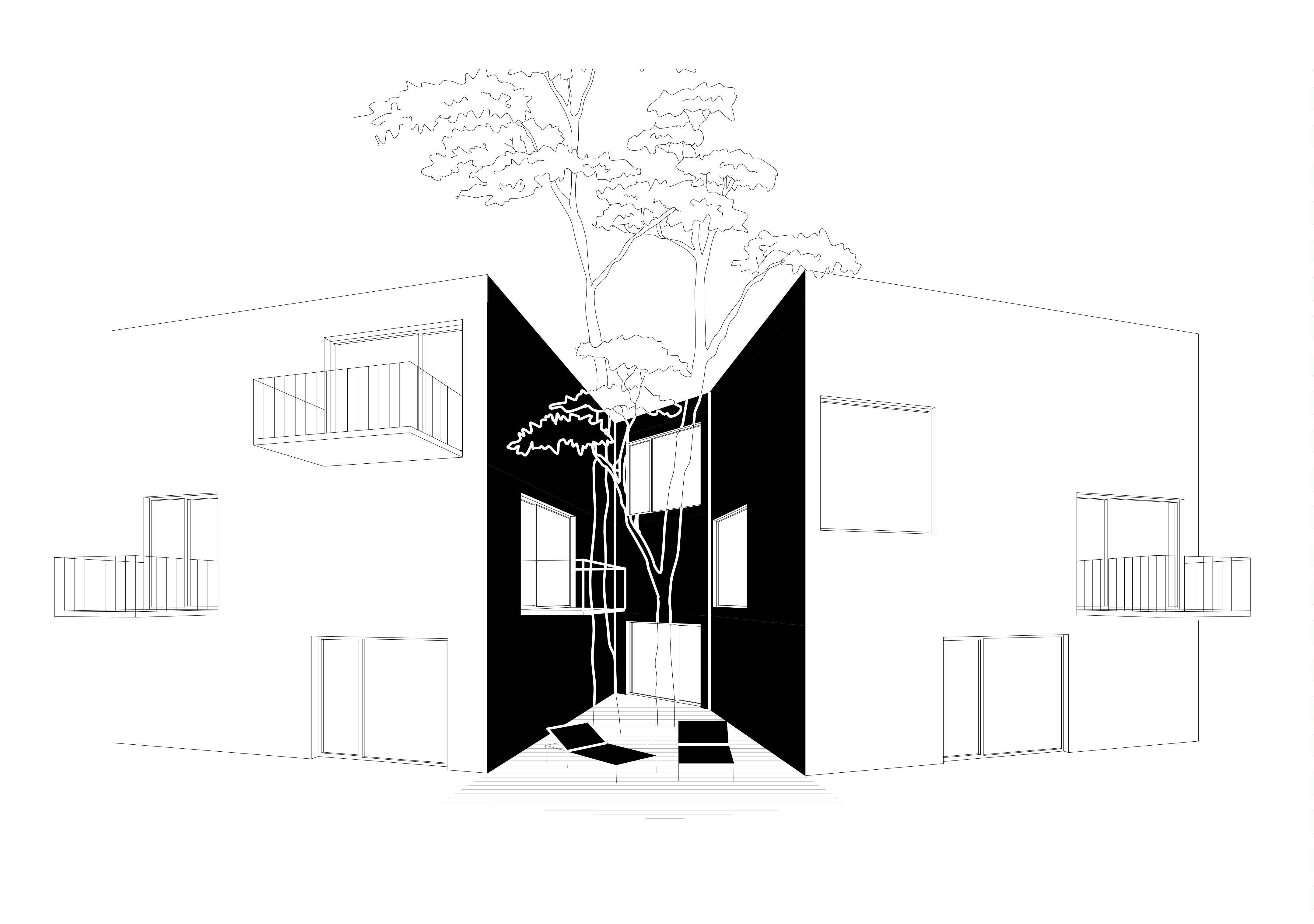 skvira